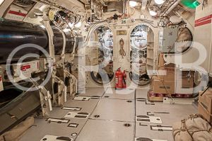 HMSAllianceMar14No-35.jpg