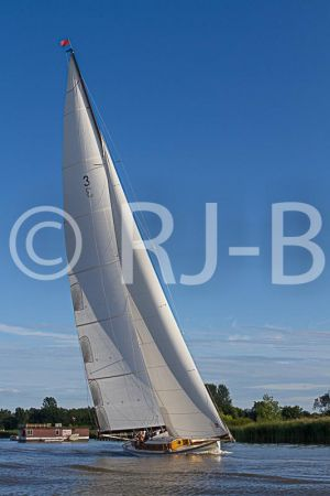 OultonWK2015No-152.jpg