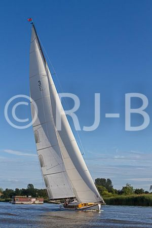 OultonWK2015No-153.jpg