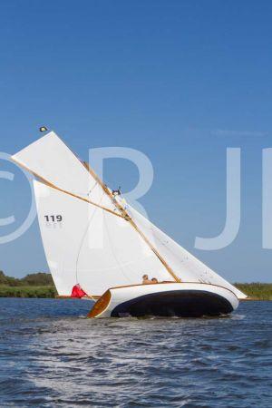 Buttercup020918No-189.jpg