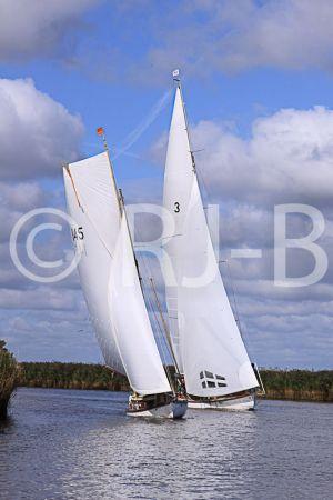 c59-YNR09N059.jpg