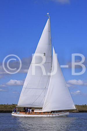 c98-YNR09N263.jpg