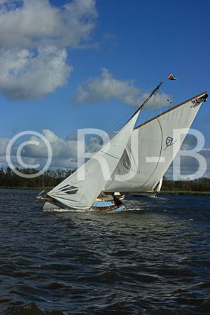 BlakesBart384.jpg