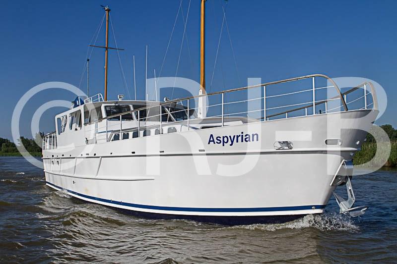 AspyrianTempNo-5