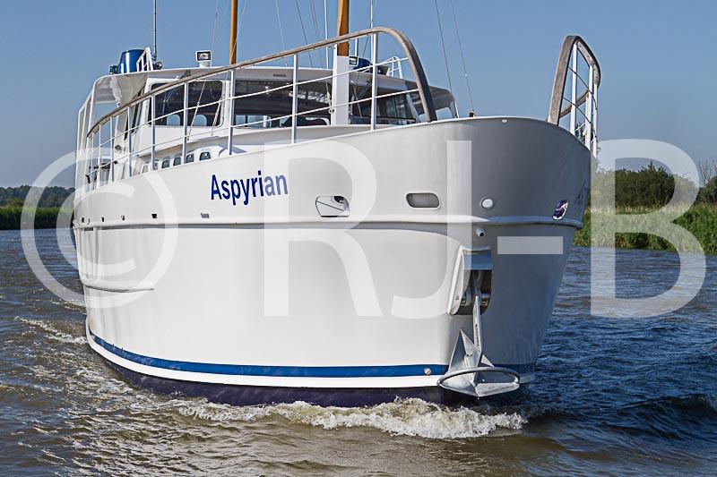 AspyrianTempNo-177