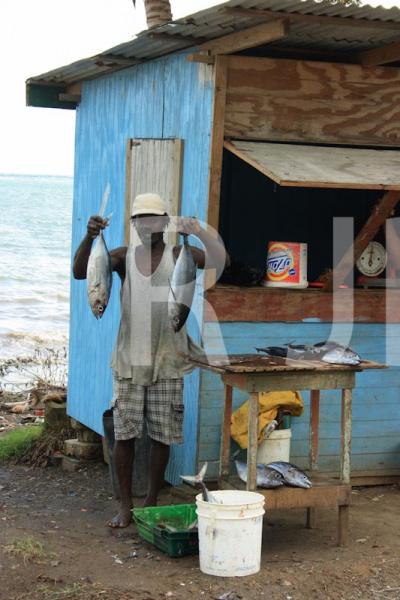 Caribbean1276